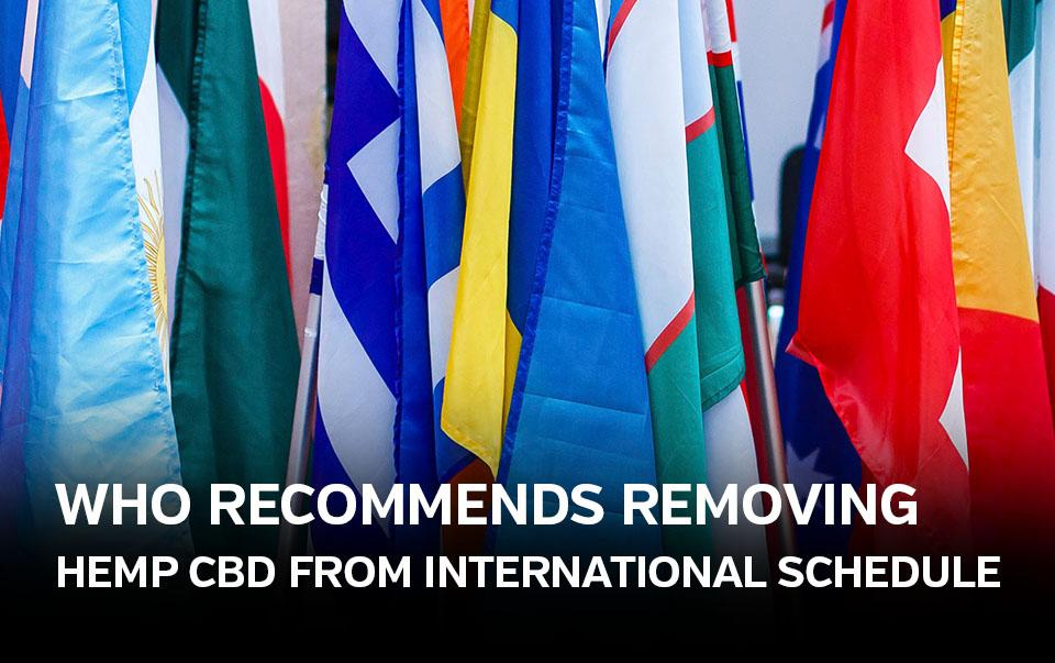 WHO Recommends Removing Hemp CBD from International Control