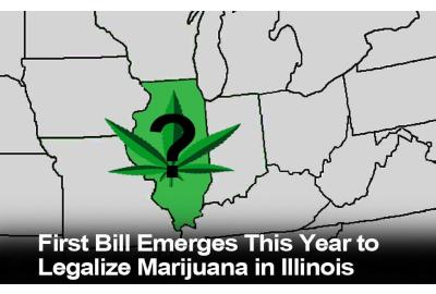 ILLINOIS: First Bill Emerges This Year to Legalize Marijuana