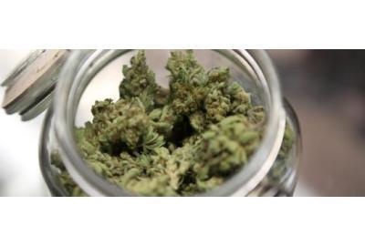 10 Astonishing Health Benefits of Cannabis
